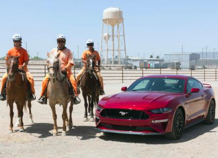 Con ngựa và xe Oto