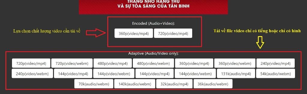 Lựa chọn kiểu file, định dạng video trước khi tải về