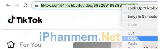 Copy đường dẫn video Tiktox mà bạn muốn chèn vào WordPress